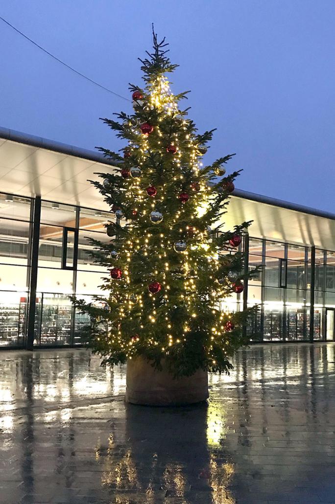 Ein Weihnachtsbaum vor einer Halle.