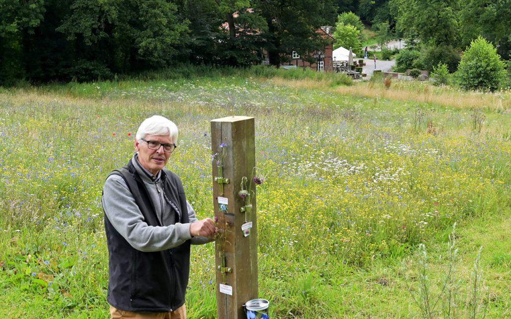 Ulf Feuerstein tauscht noch die Kräuter an der Infosäule am Heiligenberg aus. Eine Blumenwiese für Bienen.