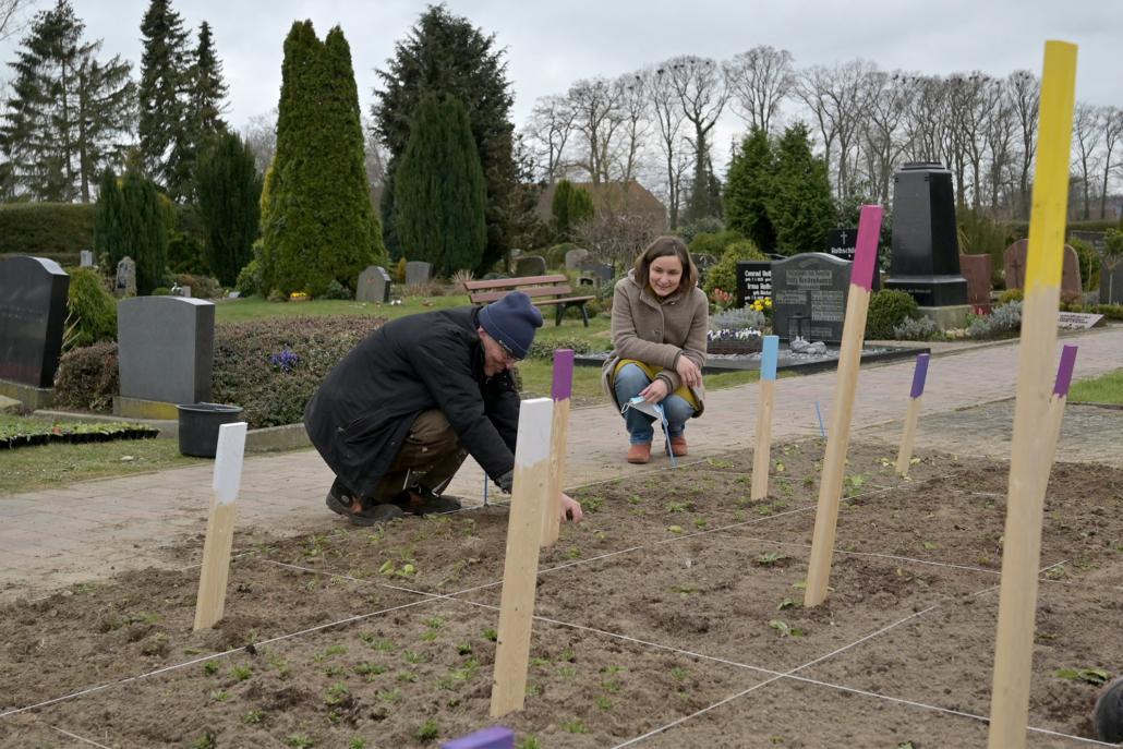 Dr. Ulf Feuerstein und Pastorin Melanie Simon pflanzen die Setzlinge in die Quadrate.